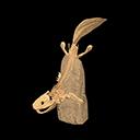 acanthostega